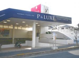 pluxtennpo-1